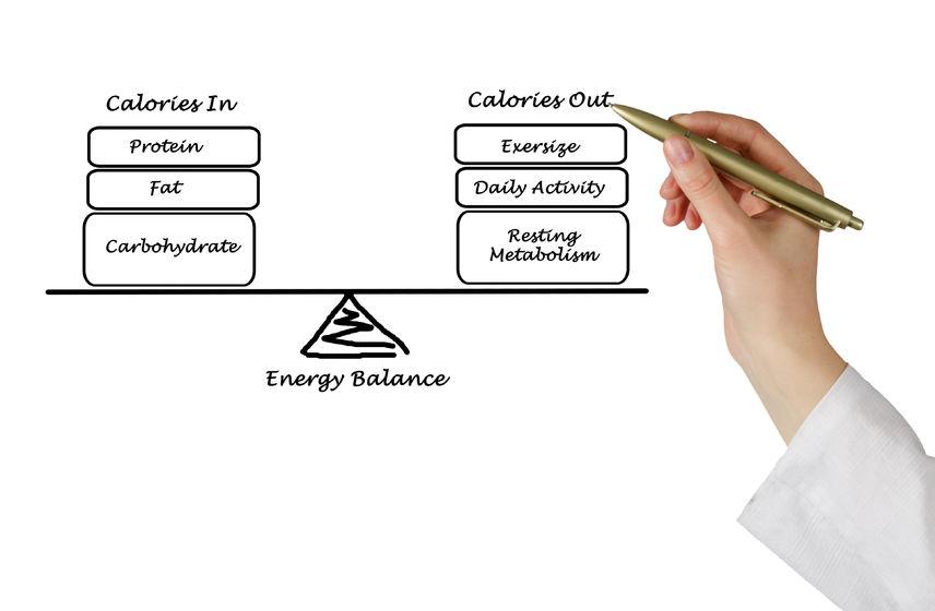 ダイエットはカロリー収支が一番重要!その次に大事なPFCバランスも解説します